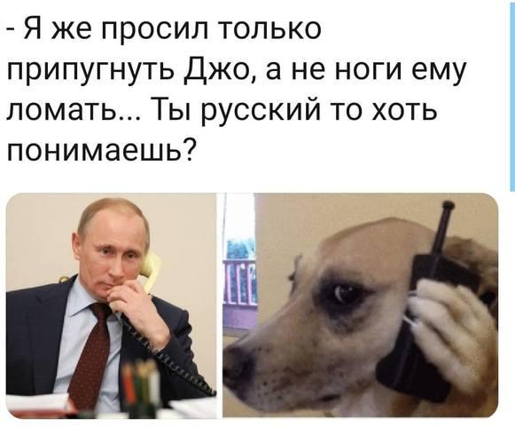 http://images.vfl.ru/ii/1607688982/c9afece0/32626600.jpg