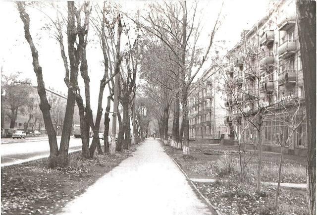 http://images.vfl.ru/ii/1612196575/70af031e/33178563_m.jpg