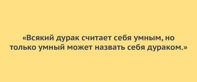 https://images.vfl.ru/ii/1613031415/6739bb02/33292592.jpg