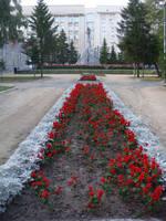 http://images.vfl.ru/ii/1615658874/4d1aec60/33666301_s.jpg