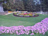 http://images.vfl.ru/ii/1615984703/71c1c1db/33709596_s.jpg
