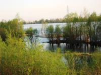 http://images.vfl.ru/ii/1619540270/e587aa08/34247347_s.jpg