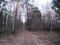 http://images.vfl.ru/ii/1619629815/4238e578/34260839_s.jpg