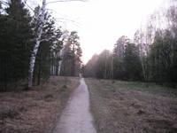http://images.vfl.ru/ii/1619629815/a5d640d7/34260838_s.jpg