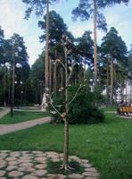 http://images.vfl.ru/ii/1619630760/bf711ccd/34261084_s.jpg