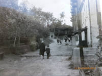 http://images.vfl.ru/ii/1621355873/79cdf3ba/34500708_s.jpg