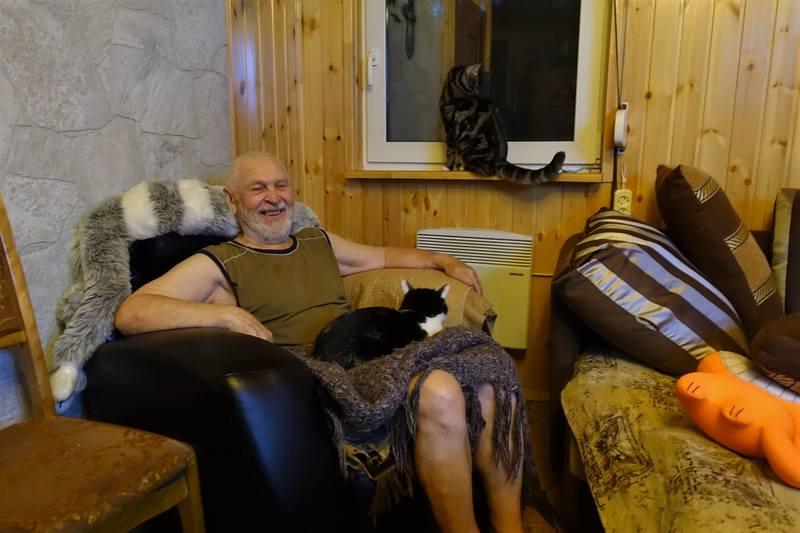 дедушка и коты