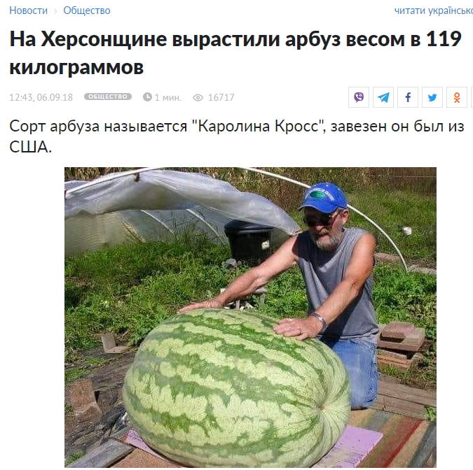 http://images.vfl.ru/ii/1631381866/43b51de5/35825868_m.jpg