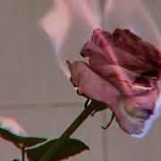 http://images.vfl.ru/ii/1632658617/150188bb/36015288.jpg