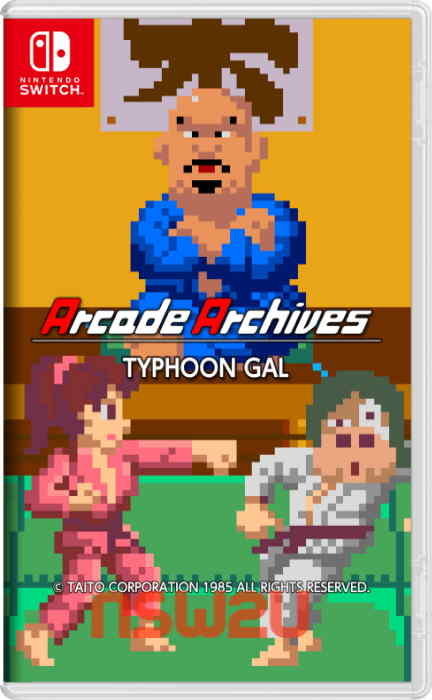 Arcade Archives TYPHOON GAL Switch NSP