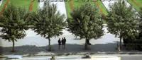http://images.vfl.ru/ii/1634230895/a41d1d1e/36260462_s.jpg