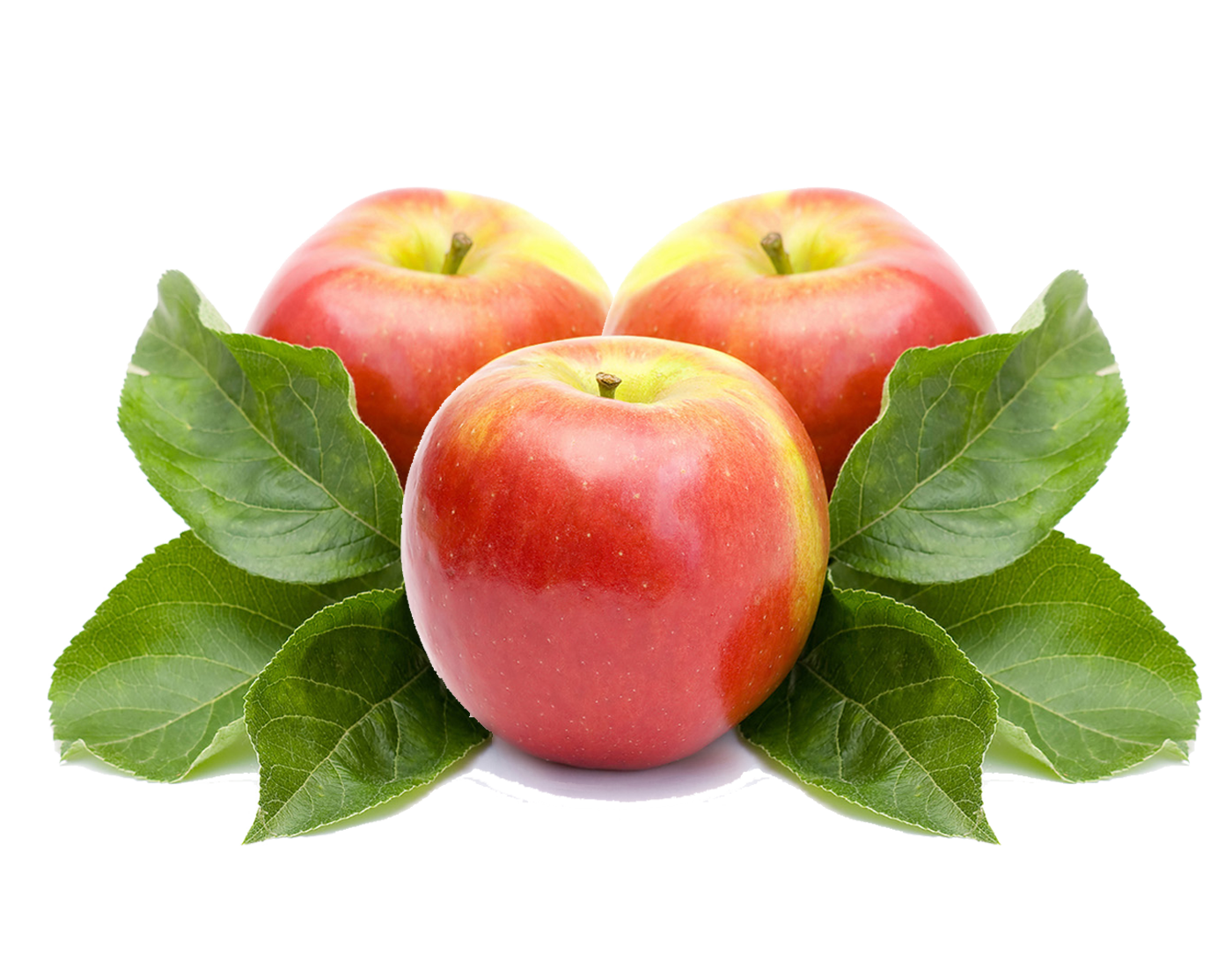 Умный человек, яблоко с листочком картинка